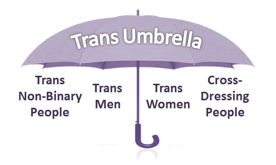 Trans umbrella showing the more specific terms of trans woman, trans man, trans non-binary people and cross-dressing people underneath the umbrella.