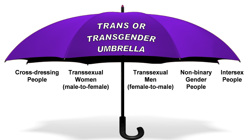 Trans Umbrella image
