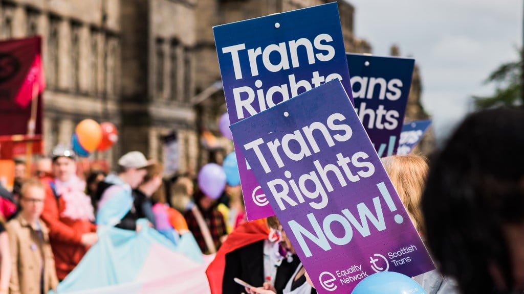 Trans rights now placards